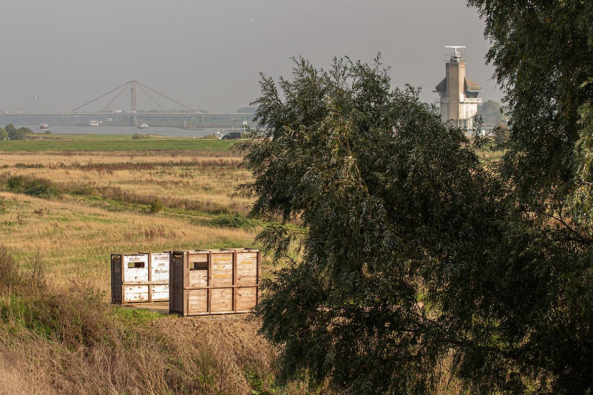 Willemswaard Krijgt Toegangspoort Van Wisentkisten