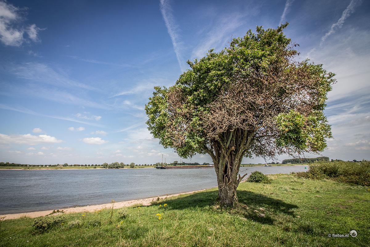Presentatie: 'Geniet van natuur' met Koos Dijksterhuis