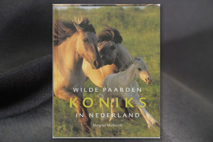 Koniks, Wilde Paarden In Nederland