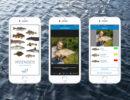 Makkelijker Vissen Herkennen Met Deze Visdeterminatieapp