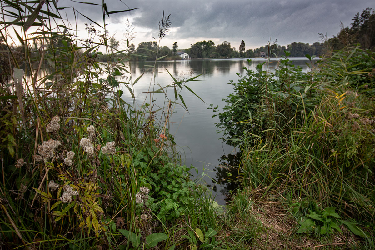 Wiel Van Bassa, Schoonrewoerd, Vijfheerenlanden, Foto Jan Van Den Berg